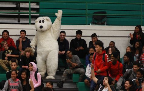 High-fiving the polar bear mascot at the top of the freshmen section was the last step to declare the winner of the crowd scavenger hunt at the last pep rally on April 21, 2017 in the North High gymnasium.
