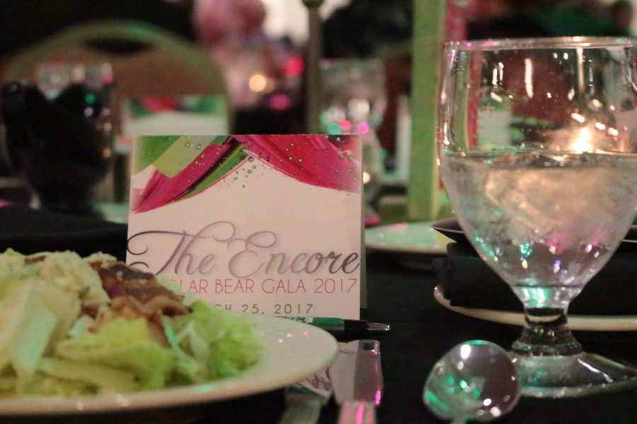 The Encore was the 2nd Annual Polar Bear Gala held at the Downtown Marriott on Saturday March 25 2017.