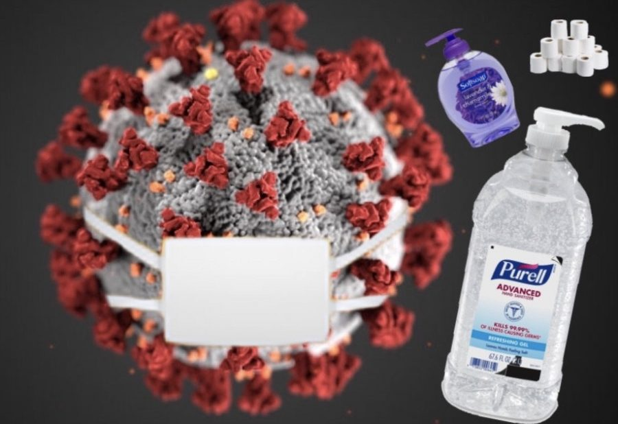Coronavirus%3A+Survive+the+pandemic